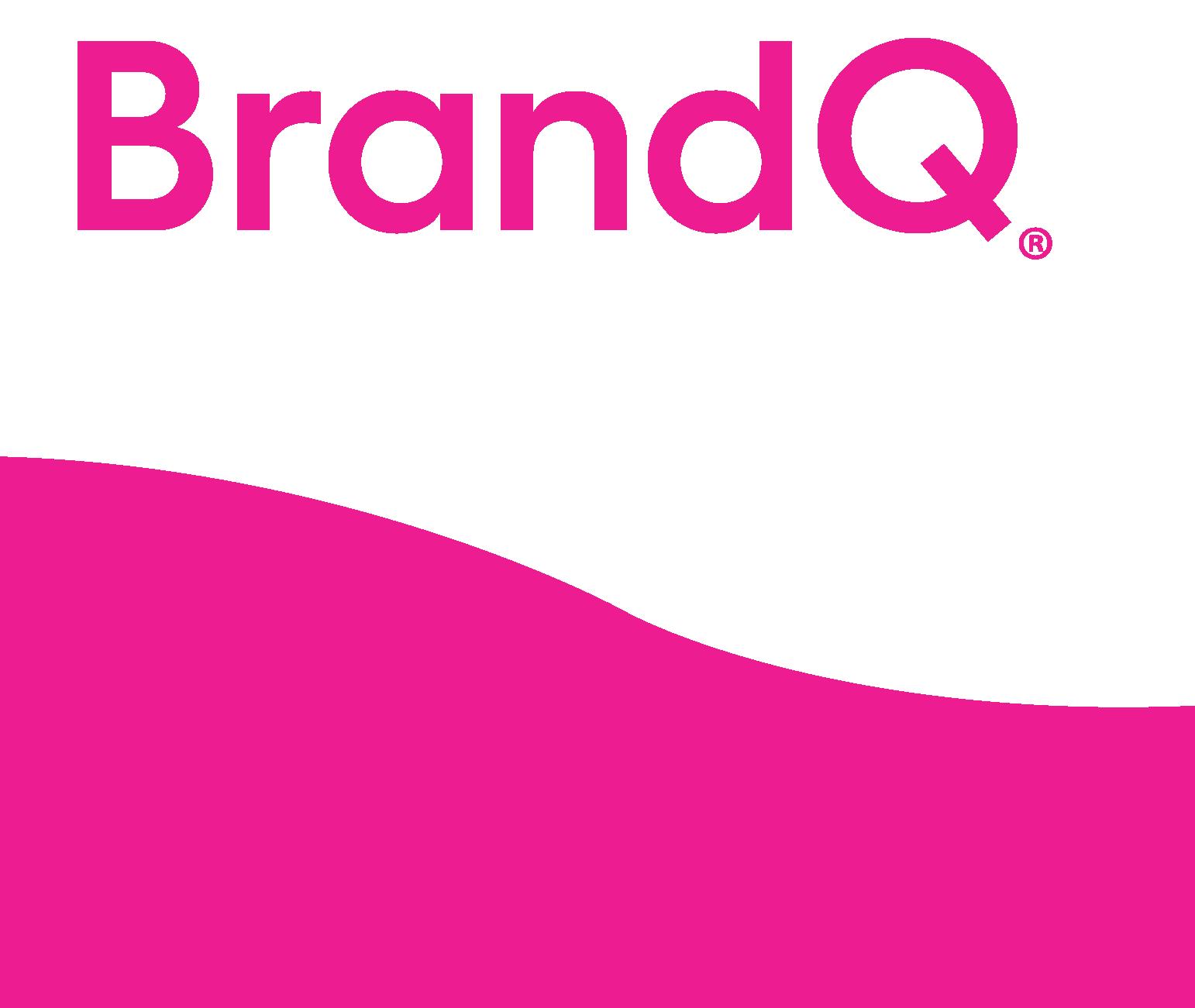 BrandQ banner logo C